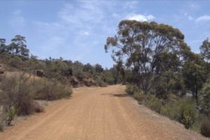 Binaural Bushwalk - Australian Walking Trail